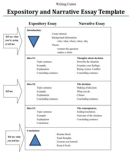 What is expository essay with examples